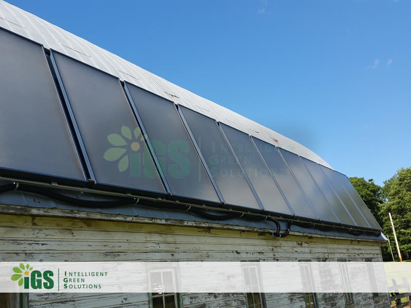 Dairy Farm Solar Hot Water System – Riverlea Farms Installation Image