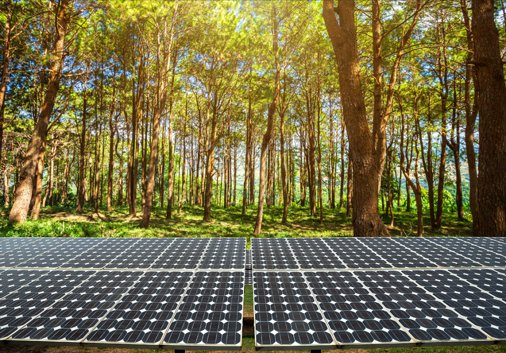Shading can have an impact on solar productivity