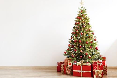 Lundins Christmas Tree Farm